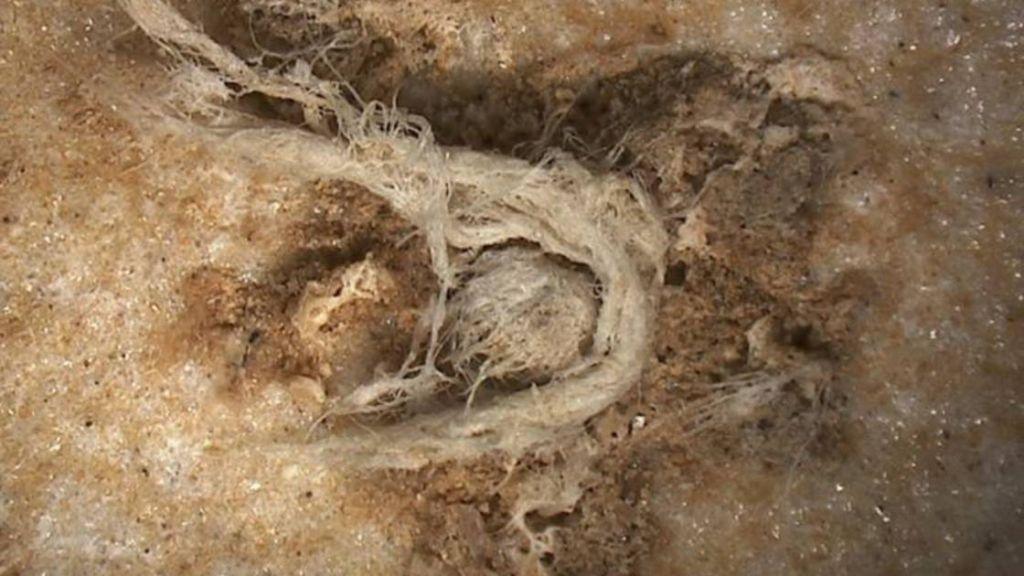 En Ardeche Un Site Revele Les Restes Dune Corde Fabriquee Il Y A 40000 Ans Par Neandertal